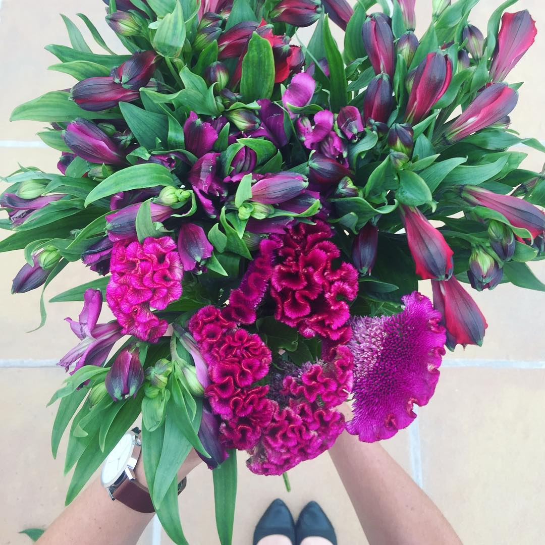 Sneak peak of what's in tomorrow's Posy - grape coloured alstroemerias and gorgeous celosia ? Preorder Wednesday's Posy at www.petalandpost.co.za