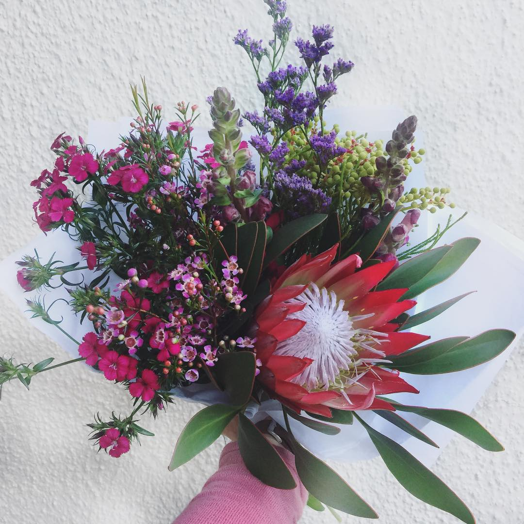 Today's Posy is the gorgeous king Protea with linoleum, wax, sweet William and snapdragons ?Order before 12:30pm or sold out at www.petalandpost.co.za