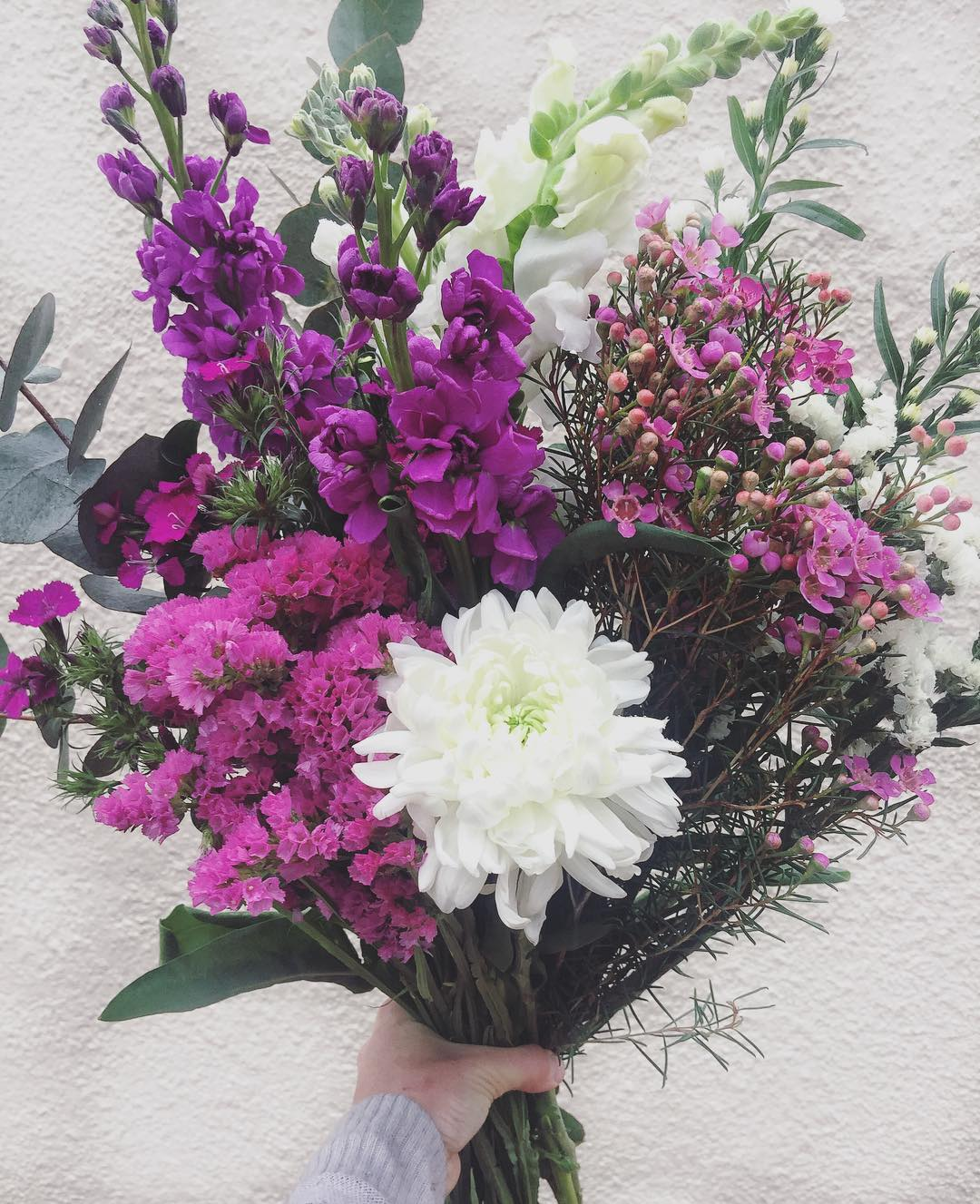 Straight From The Flower Fields Todays Posy Is Gorgeous Violet
