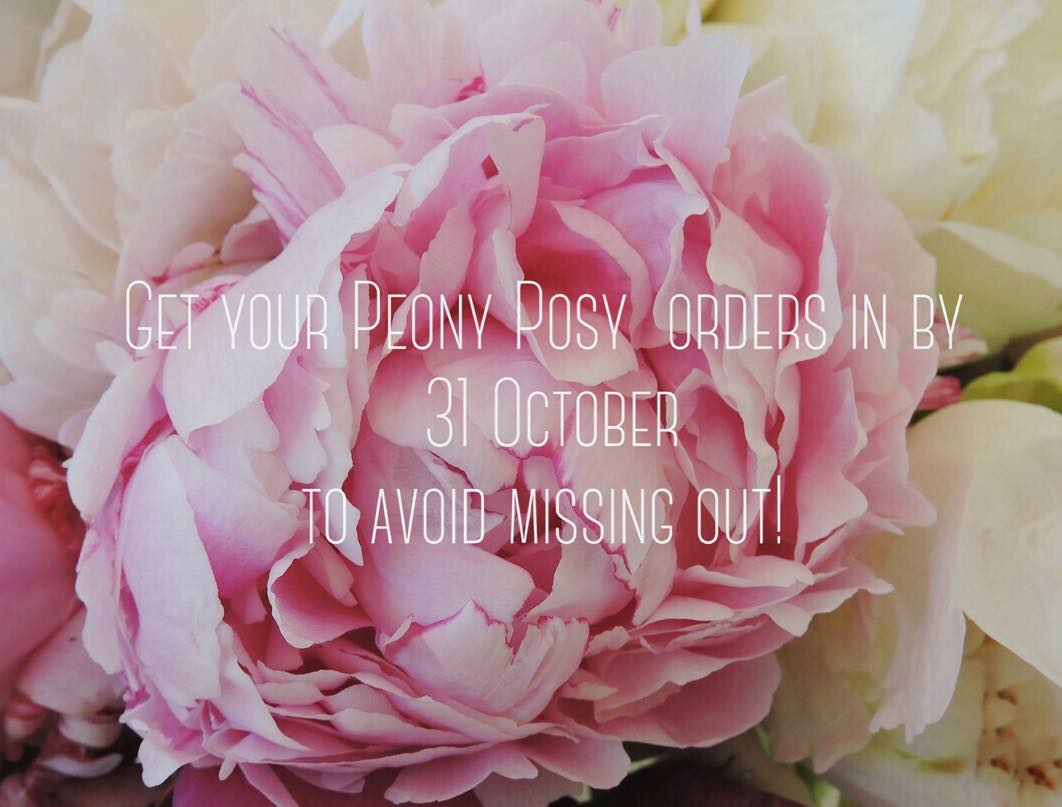 Order quick! Link in bio, or look under our Products tab on the website 💗#peony