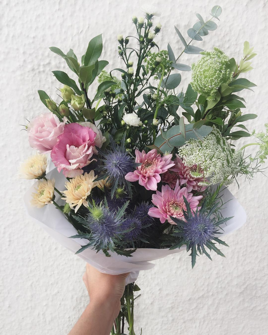 Today we have other-worldly sea holly, with queen's lace, lisianthus, sprays and penny gum. Order before 12:30pm for delivery today.