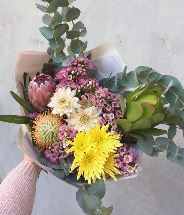 Today's Posy is pincushions, proteas, wax, sprays, leucadendron and penny gum. Order online before 12:30 for delivery today.