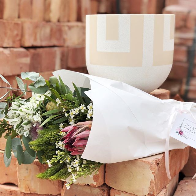 We had loads of fun with @goldbottompots in the studio this morning for the Instagram Takeover!  Today's Posy is proteas, snow on the mountain, daisies, sprays and penny gum. Order before 12:30pm for delivery today.  Image by @goldbottompots  #Petalandpost#capetown#capetownflorist#lovezabuyza#localzadesign#lovelocalza#hellopretty#capetownmag#cylcollective #capetownlikes#supportlocal#posylove#wedding#local#botanical#theprettyblog#gardenday#capetowninfo#handmadeincapetown#madeinsouthafrica#lokalza#durbanville#proudlysouthafrican