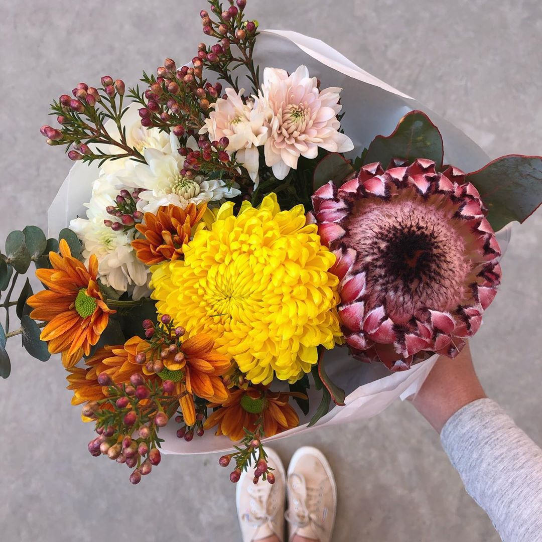 Monday's gorgeous Posy is Japanese chrysanthemums with barbigera proteas, stocks, erica and statice. Order online before 1pm for delivery today . . . #Petalandpost#capetown#capetownflorist#lovezabuyza#localzadesign#lovelocalza#hellopretty#capetownmag#cylcollective #capetownlikes#supportlocal#posylove#wedding#theprettyblog#capetowninfo#handmadeincapetown#madeinsouthafrica#lokalza#durbanville#proudlysouthafrican#workingwomanwednesday#lovecapetown#secretcapetown#capetownetc#capetownliving#capetownmag#whatsonincapetown