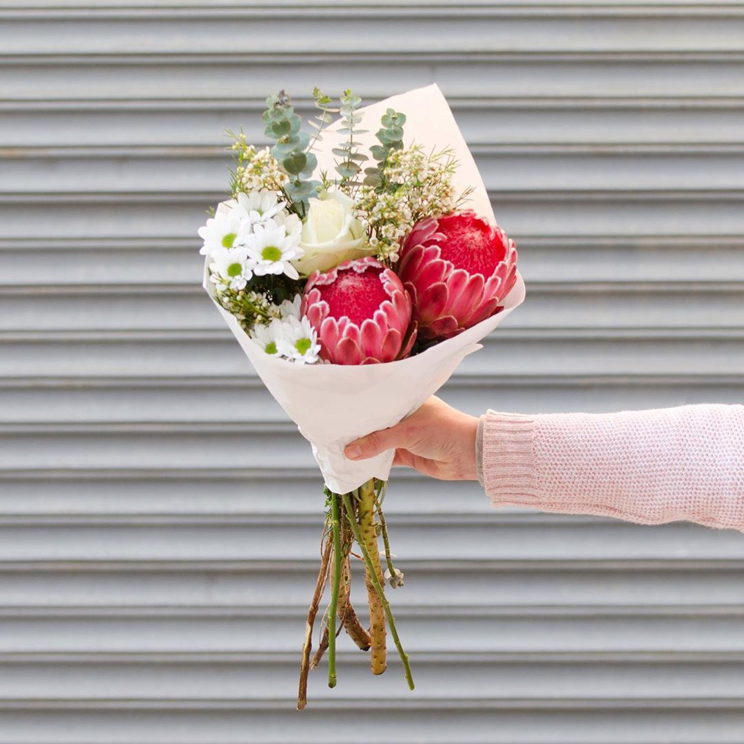 Tuesday's Posy is striking Venus proteas with white wax, designer penny gum and chrysanthemums. Order online before 1pm for delivery today . . . #Petalandpost#capetown#capetownflorist#lovezabuyza#localzadesign#lovelocalza#hellopretty#capetownmag#cylcollective #capetownlikes#supportlocal#posylove#wedding#theprettyblog#capetowninfo#handmadeincapetown#madeinsouthafrica#lokalza#durbanville#proudlysouthafrican#workingwomanwednesday#lovecapetown#secretcapetown#capetownetc#capetownliving#capetownmag#whatsonincapetown