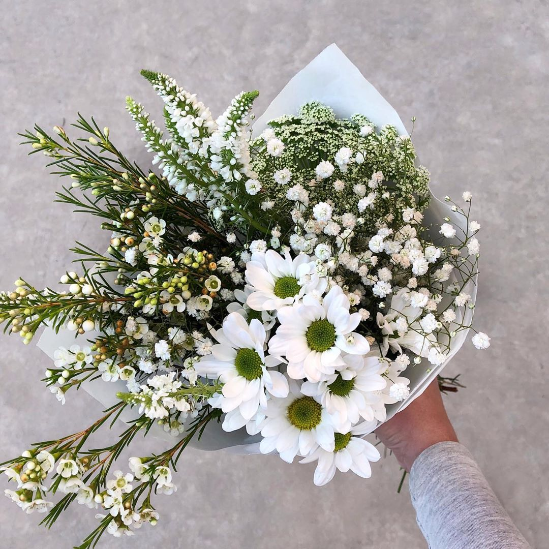 We call her The Cloud Posy. Tuesday's Posy is gypsophila with Veronicas or stocks, Geraldton wax flower, Queen Anne's lace and white chrysanthemums. Order online before 1pm for delivery today . . . #Petalandpost#capetown#capetownflorist#lovezabuyza#localzadesign#lovelocalza#hellopretty#capetownmag#cylcollective #capetownlikes#supportlocal#posylove#wedding#theprettyblog#capetowninfo#handmadeincapetown#madeinsouthafrica#lokalza#durbanville#proudlysouthafrican#workingwomanwednesday#lovecapetown#secretcapetown#capetownetc#capetownliving#capetownmag#whatsonincapetown