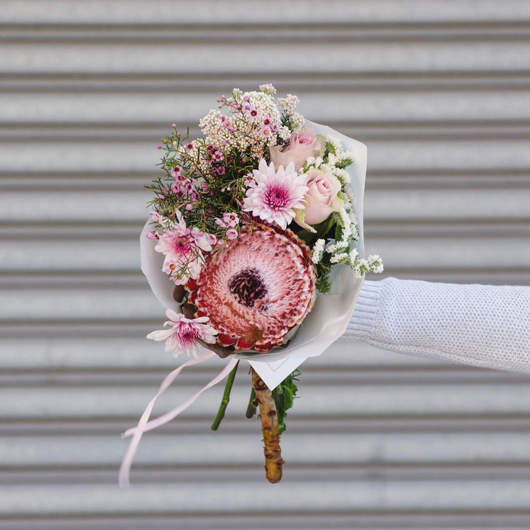 Monday's Posy is giant barbigera protea with rice flower, peach roses, statice and pink chrysanthemums. Order online before 1pm for delivery today . . . . #Petalandpost#capetown#capetownflorist#lovezabuyza#localzadesign#lovelocalza#hellopretty#capetownmag#cylcollective #capetownlikes#supportlocal#posylove#wedding#local#botanical#theprettyblog#gardenday#capetowninfo#handmadeincapetown#madeinsouthafrica#lokalza#durbanville#proudlysouthafrican